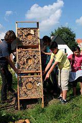 bijenhotel workshop