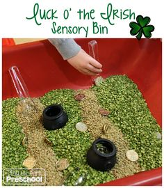 Luck o' the Irish Sensory Bin for St. Patrick's Day - Repinned by Pre-K Complete. Follow us at www.PreKComplete.com and www.facebook.com/prekcomplete.   - repinned by @PediaStaff – Please Visit  ht.ly/63sNt for all our pediatric therapy pins