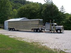 Peterbilt Cattle Hauler