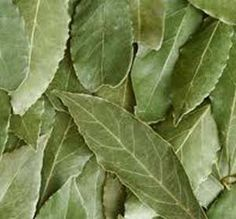 Make Your Own Organic Natural Yellow Fabric Dyes: Bay Leaves