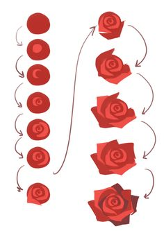 How to draw or paint simple roses, cute and easy tutorial for doodling or sketching these beautiful flowers