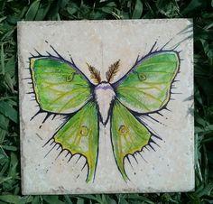 Luna Moth original art on 6 x 6  italian made by ScribbleSketches, $14.00