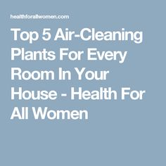 Top 5 Air-Cleaning Plants For Every Room In Your House - Health For All Women
