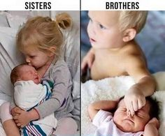 261 Best Siblings Love And Funny Images In 2019 Sisters Quotes
