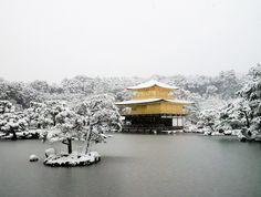 Gold in Japan Winter