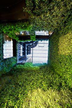 Loewe | Vertical Garden Design