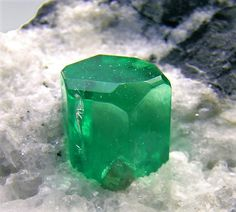 Beryl var. Emerald - Colombia Love Rocks, Rocks And Gems, Crystals And Gemstones, Stones And Crystals, You Rock, Mineral Stone, Gems And Minerals, Precious Metals, Emerald