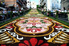 Discover the Web!: flower festival in Genzano, Italy