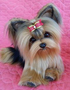 SHELBY a life size Yorkie puppy dog By Brigitte Crowe - Bear Pile