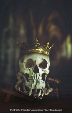 Sandra Cunningham Human skull wearing gold crown in Abbey Miscellaneous Objects