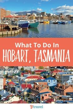 Looking for tips on what to do in Hobart, Tasmania? We spent 6 days exploring Hobart, here are our suggestions for things to do and where to eat and sleep. Queensland Australia, Western Australia, Australia Travel, Hobart Australia, Australia Day, Tasmania Road Trip, Tasmania Travel, Ocean Photography, Travel Photography