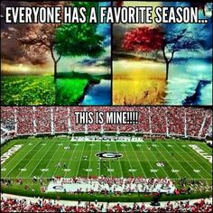 Everyone has a favorite season. This is mine! Go Dawgs! Ga Bulldogs Football, Sec Football, College Football Teams, Football Love, Football Memes, Football Season, Football Baby, Football Shirts, Georgia College