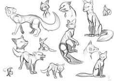 Sketch Face as much as I've drawn the faces of many animals, I haven't really drawn the entire body. I decided to start with a fox, thinking i could find a bunch of reference images, I was wrong. Fox Drawing, Drawing Base, Drawing Sketches, Drawing Tips, Cartoon Drawing Tutorial, Cartoon Drawings, Cute Drawings, Animal Sketches, Animal Drawings