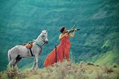 White horse and a violin :-) Ah, the memories. Horse Pictures, Horse Girl, Wild Horses, Beautiful Horses, My Beauty, Lady, Equestrian, Deviantart, Portrait