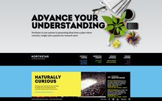 Northstar Research Partners by Bruce Mau Design , via Behance