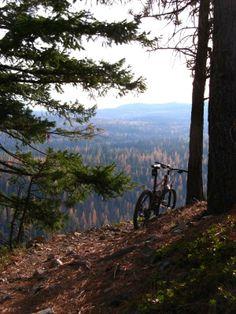 8 Mile Loop/ Tr #459 Mountain Bike Trail in Hood River