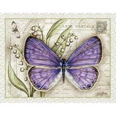 Lavender Butterfly Boxed Notecard - Let other's know to keep an eye out for spring butterfly's with Jane Shasky's nature art boxed notecard. Vintage Butterfly, Butterfly Cards, Butterfly Print, Butterfly Wings, Purple Butterfly, Vintage Cards, Vintage Images, Butterfly Illustration, Mail Art