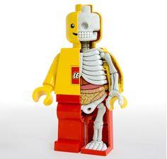 Anatomia-Personajes-Jason-Freeny-005