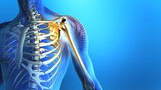 Shoulder X-Ray