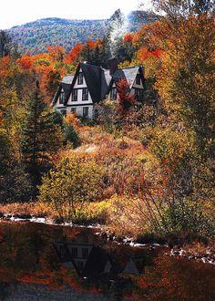 Fall Foliage Run
