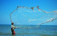 Bahía de Cispatá