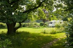 Camper Life, Caravan, Netherlands, Golf Courses, Camping, World, Nature, Plants, Travel