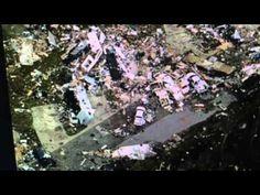 """Virginia """"Tornadoes"""" Leaves 4 Dead"""