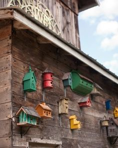 Bird houses in a variety of colors hang on the side of an old barn