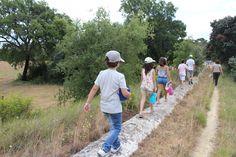 Passeios científicos para observação da biodiversidade são uma das muitas atividades do programa das CARSOférias de verão 2017, para crianças e jovens dos 6 aos 11 anos de idade. Inscrições abertas!