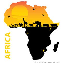 Africa and the big five. Graphic belongs to an Article about bioenergy projects in african countries. #biogas #biofuels