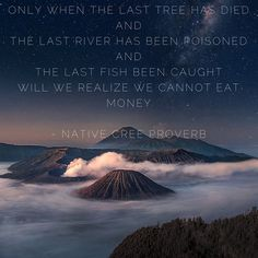 """""""Only when the last tree has died and the last river has been poisoned and the last fish been caught will we realize we cannot eat money."""" Native Cree proverb"""