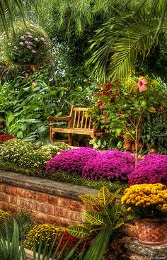 Informal planting in terraced raised brick-edged garden beds