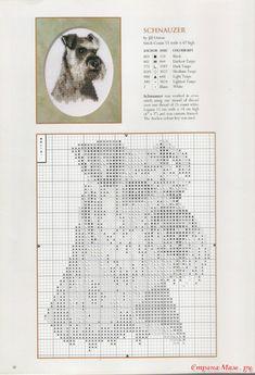 Gallery.ru / Фото #34 - собаки - Valentina-A
