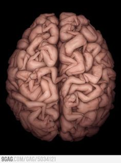 Human´s brain. This is a crazy cool pic but at the same time can you imagine posing with a strangers butt on your shoulder?: