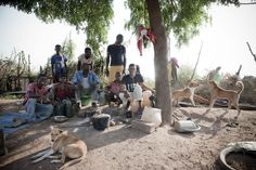 @Jason Stocks-Young Florio - Gardeners on the banks of the River Gambia, Kedougou, Senegal, West Africa
