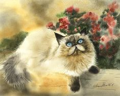 Fur and Flowers by Drew Stouble on Catmandrew.com