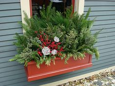 Winter Windowbox in Andersonville | Flickr - Photo Sharing!