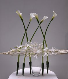 Arrangements of gannets - orchids - Bridal bouquets - Mexico - makes me think of ballerinas.