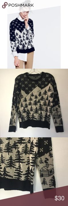 J.Crew Black and Grey Pine Tree Sweater Softest ever 100% knit wool. Excellent used condition. Marked Small, fits oversized for layering. So perfect for ski and snowboard days! Please ignore bad lighting in my iPhone pics. Sweater is black and gray. J. Crew Sweaters Crew & Scoop Necks