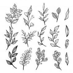 Botanical Line Drawing, Botanical Tattoo, Botanical Drawings, Leaf Drawing, Plant Drawing, Floral Drawing, Mini Tattoos, Flower Tattoos, Ramo Tattoo