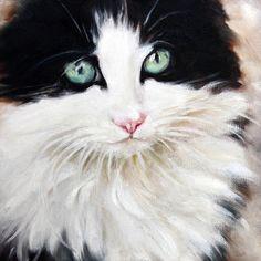 Cat Oil Painting Cat Art Tuxedo Cat Original Art 6x6 by cmqstudio