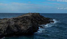 Tenerife : Los Cristianos - Un bras dans l'océan