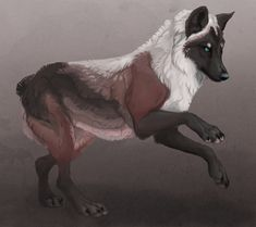 Commission: Kientrae by savage Mythical Creatures Art, Weird Creatures, Fantasy Creatures, Wolf Images, Wolf Pictures, Art Wolfe, Anime Wolf Drawing, Anime Art, Feral Heart