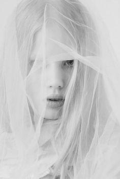 ☫ A Veiled Tale ☫