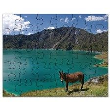 Donkey at Quilotoa Crater Lake Puzzle for