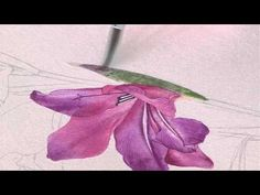 Billy Showell: How to paint a Gladioli - Preview Video - YouTube