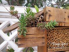 Hotel de insectos, detalle.  www.lagranjadebitxos.com Fauna, Tiny Homes, Garden Ideas, Planter Pots, Home And Garden, Bug Hotel, Hotels, Crates, Backyard Ideas