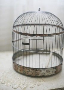 """Victorian Beehive Maxwell Bird Cage"".    If you love #vintage/antique home decor, you will want to buy every single thing sadieolive is selling on Etsy!    I discovered this seller via an #Etsy Treasury posted by JuJuBaju called ""As You Wish"".  This charming Victorian era beehive bird cage caught my eye and I thought some of you would love it (and the other great things posted by sadieolive)."