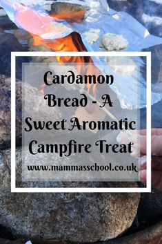 Cardamon Bread - A Sweet Aromatic Campfire Treat – Mamma's School Flavored Toothpaste, Colon Health, Campfire Food, Cast Iron Cooking, Forest School, Bread Cake, Afternoon Snacks, Outdoor Cooking, Tasty