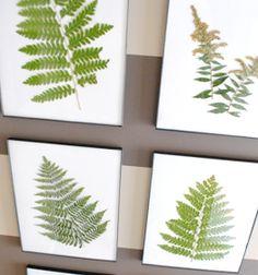 DIY | Ingelijste gedroogde bladeren